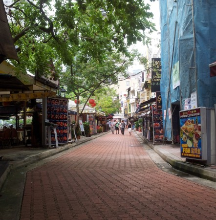Sirn Madipalli Singapore | Wheelchair travel | Disability Horizons