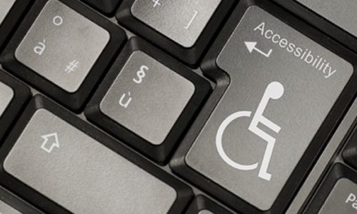Survey designed to improve the accessibility of websites