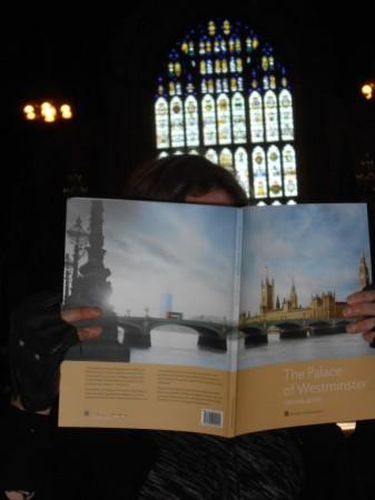 Accessible Parliament tour Disability Horizons
