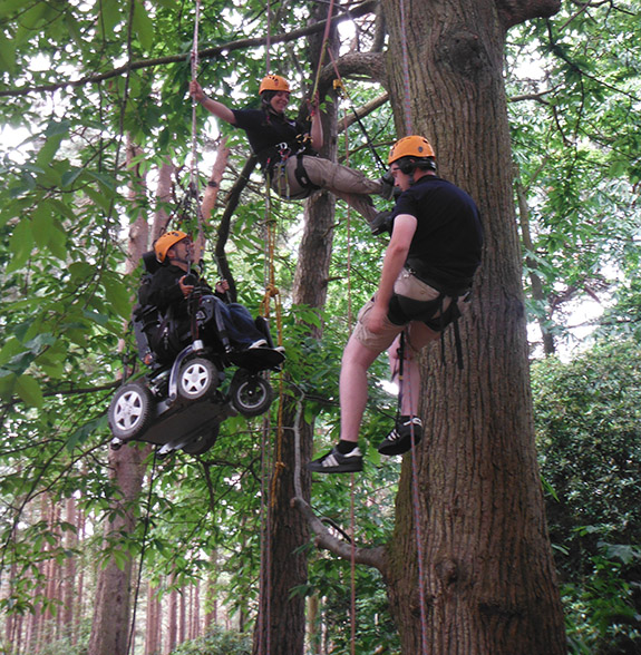 Martyn Sibley tree climbing in New Forest