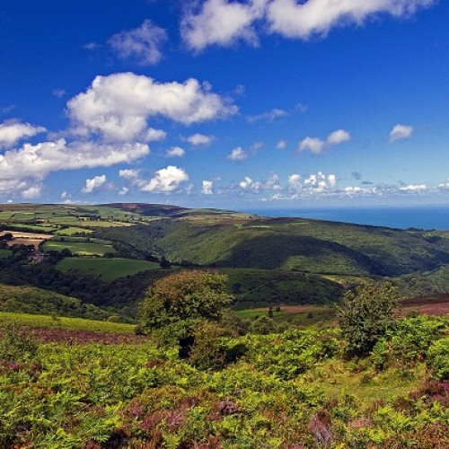 Access All Areas: accessible Exmoor