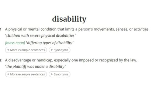 What is acceptable disability terminology?