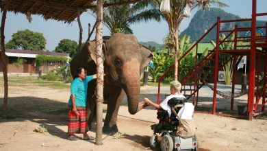 Photo of My incredible trip through Thailand (via Oman!)