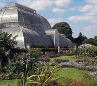 Kew Gardens disabled access - London accessibility