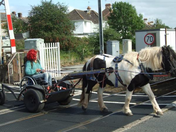 Pony Access tram crossing