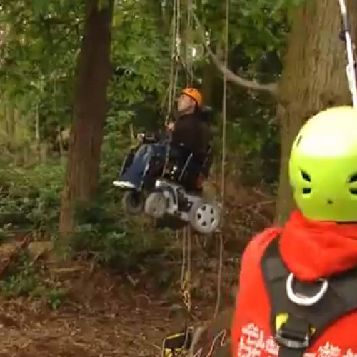 Access All Areas: accessible activities in the New Forest