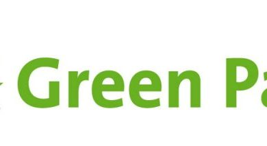 Photo of General election 2015: what will the Green Party do for disabled people?