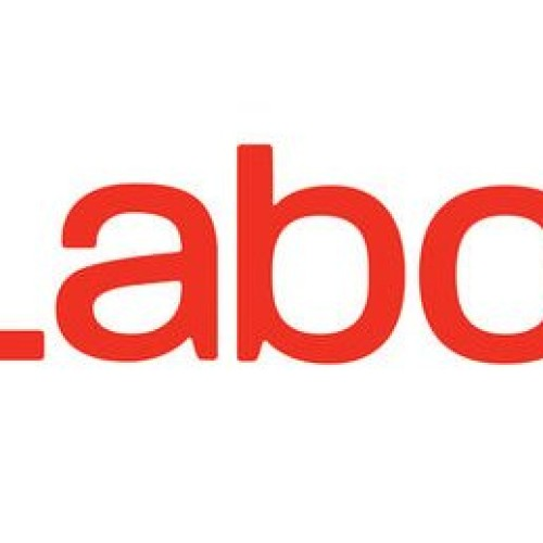 General election 2015: what will the Labour Party do for disabled people?