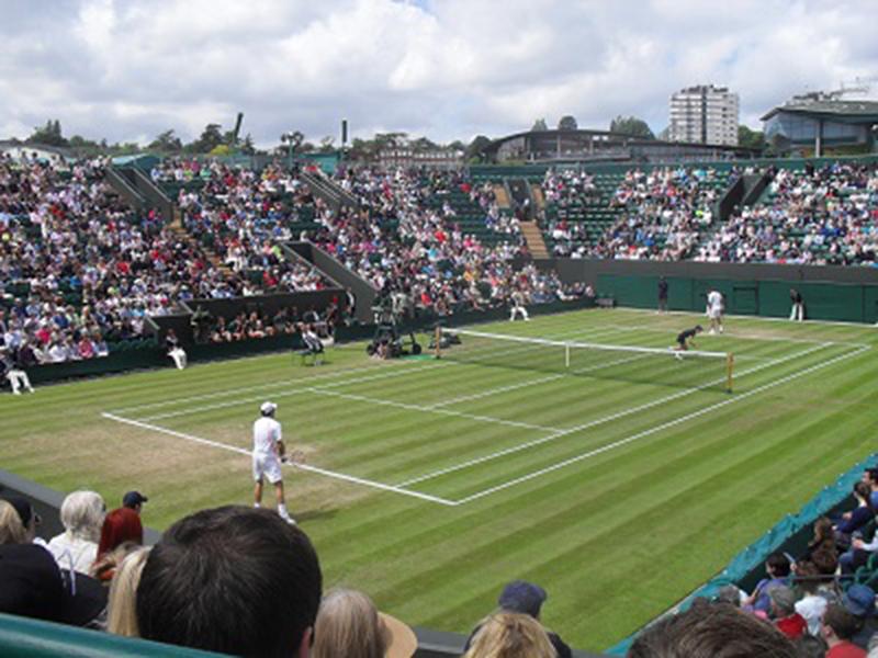 Wimbledon tennis players