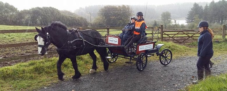 martyn-sibley-on-horse-and-carriage-ride-with-calvert-trust