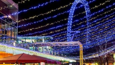 Photo of Top 5 accessible attractions to visit this Christmas