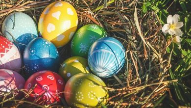 Photo of 5 disability aids to help you enjoy the Easter weekend