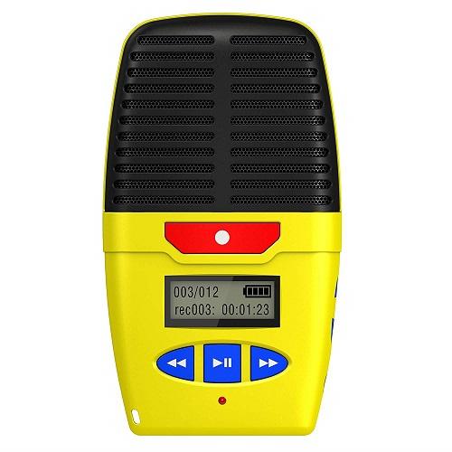 Digital voice recorder dictaphone