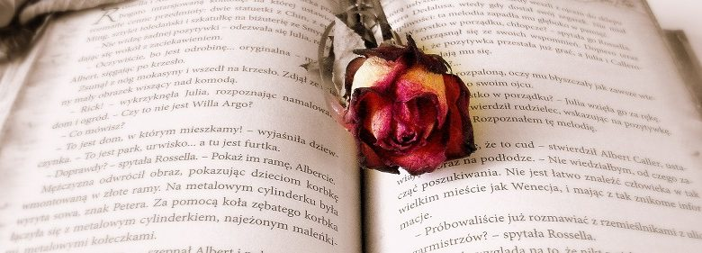 Open book with rose laying on top