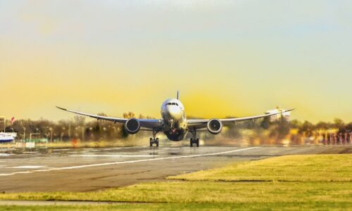 Disability Horizons survey reveals how airlines and airports need to improve for disabled passengers