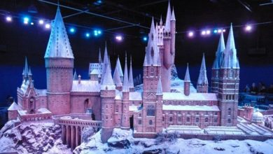 Photo of Harry Potter Studio Tour accessibility: walking in a wizardry wonderland