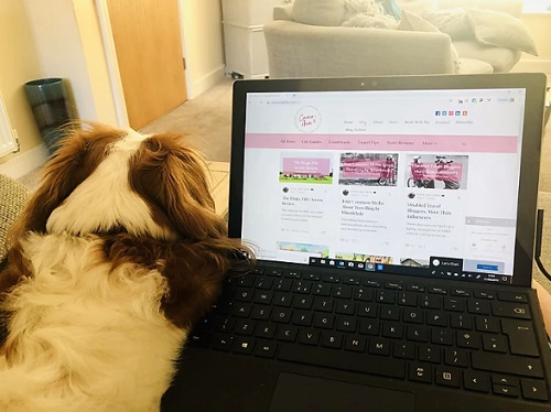 Carrie-Ann's laptop on her lap with her dog next to it on the sofa