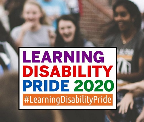 Learning Disability Pride logo