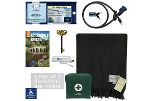 Disabled driver's accessory hamper and Blue Badge anti-theft device
